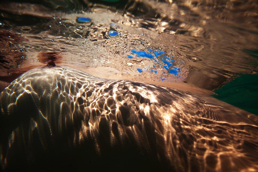 correnticonvettive_riccardociriello_chioggia_sottomarina_croatia_alessiafontanella02